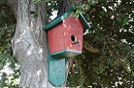 DIY Bluebird House