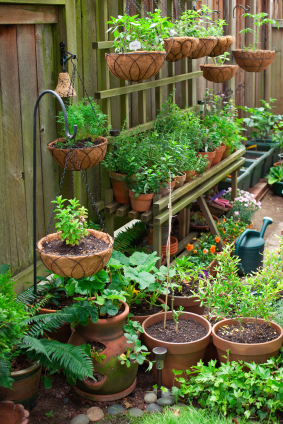 Grow A Garden In Pots Growing vegetables in containers workwithnaturefo