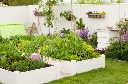 Organic Gardening For Tight Spaces